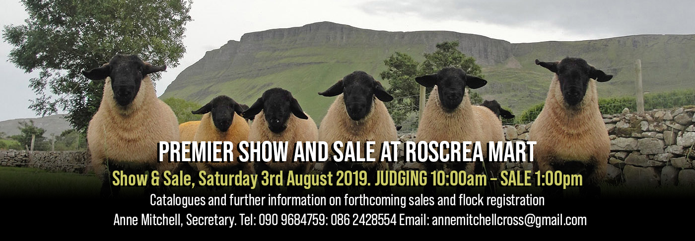 Irish Suffolk Sheep Society – Just another WordPress site
